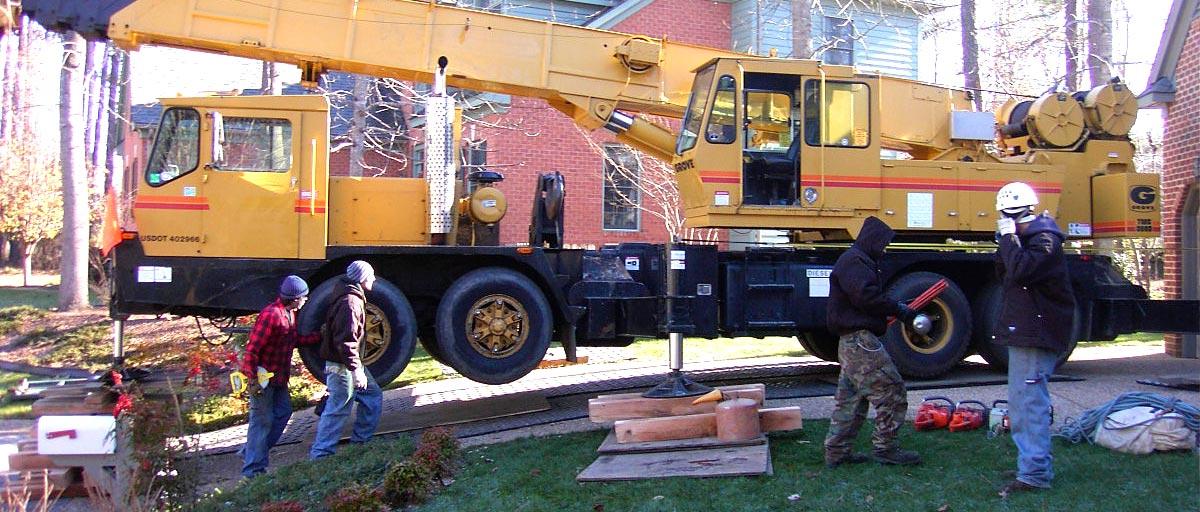 Tree Removal Hampton, Tree Removal Newport News, Tree Removal Yorktown, Tree Removal Williamsburg, Tree Removal Norfolk, Tree Removal Smithfield, Tree Removal Virginia Beach, Tree Removal Chesapeake