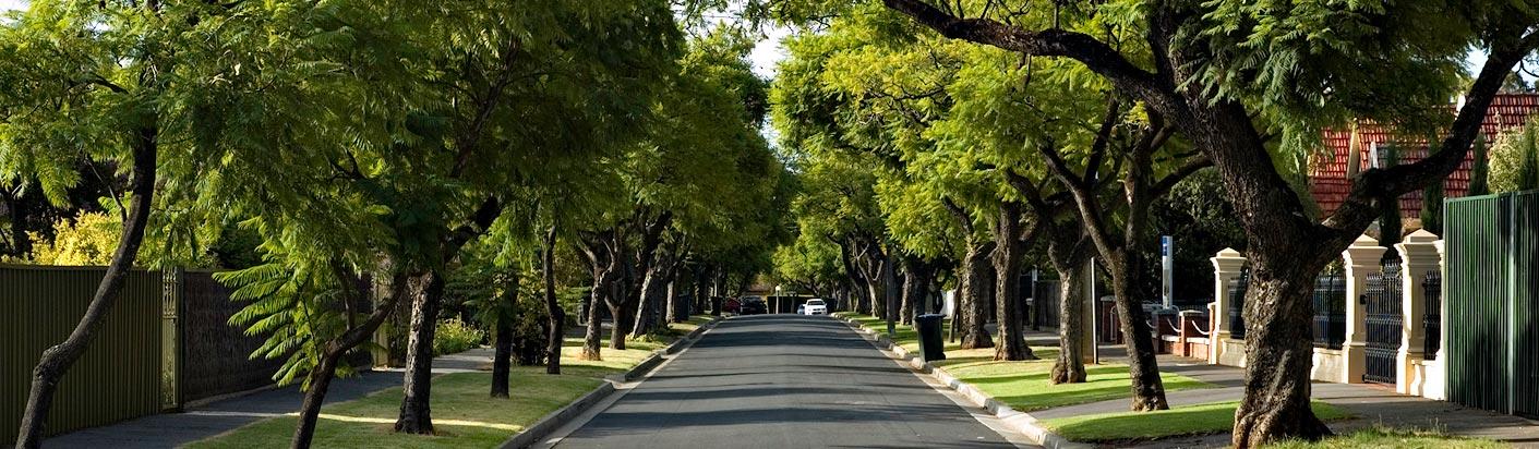 Toorak_Gardens_Street